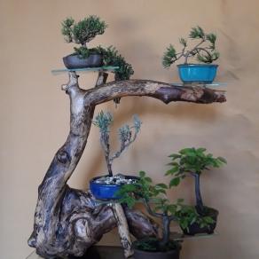 zahradnictvo-suslik-vlastne-bojsaje_06